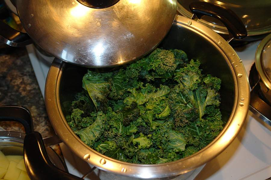 gruenkohl-abkochen