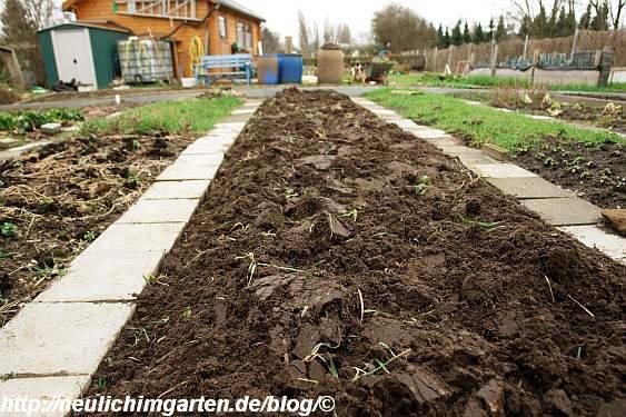 frisch-umgegrabenes-beet