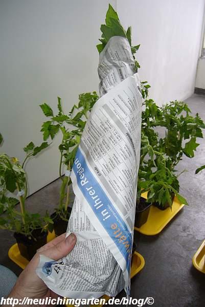 treml-verpackung-lieferung