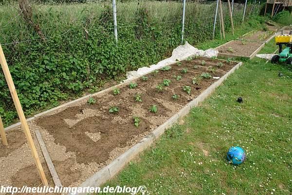 Garten Am Hang Anlegen Beet Terrassen Gartengestaltung Am ...