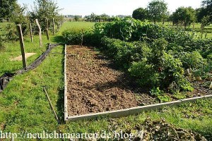 erdbeeren-pflanzen-beetvorbereitung