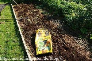 erdbeeren-pflanzen-beetvorbereitung-mit-kompost