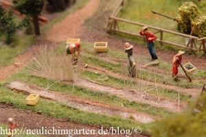 feldarbeit-im-miniaturwunderland-3