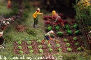 feldarbeit-im-miniaturwunderland