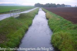 gillbach-im-ursprungszustand