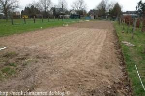 getreideanbau-im-hobbygarten