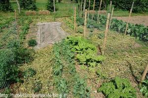 mulch-im-hobbygarten