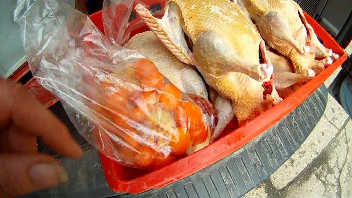 hühner rupfen federn
