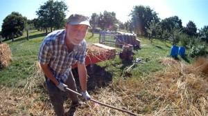 Weizen zur Selbstversorgung anbauen