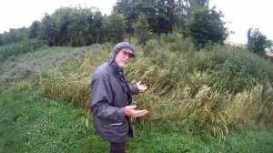 Gartenrundgang bei Dauerregen