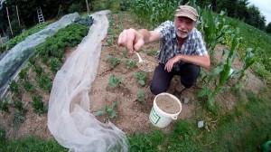 Guano im Garten